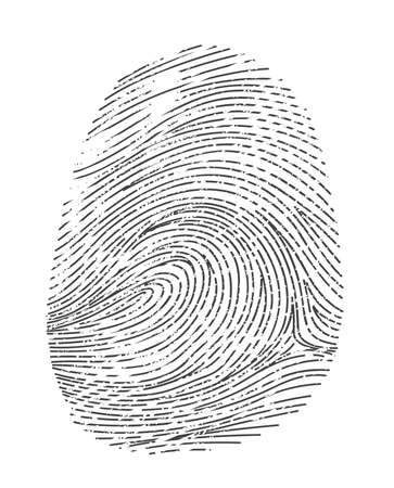 Fingerprint twisted lines isolated on white.