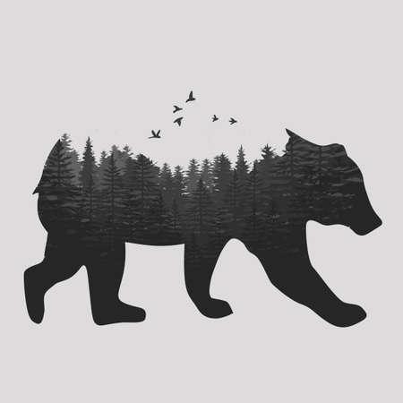 Bear illustration. Ilustrace