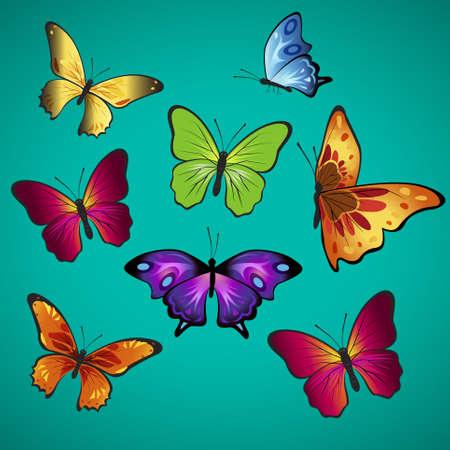 Beautifully butterflies.