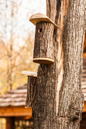 Shelter for birds in the birdhouse hanging on a tree in autumn Park