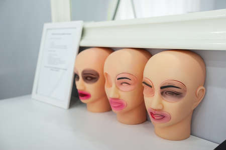 dummies: training dummies for permanent make-up, study and skill