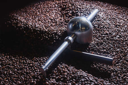 Roasting process of coffee. Coffee beans moved by the rotating shovel inside the hopper for cooling down and screening after roasting. Drum type roaster