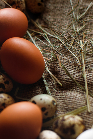 Fresh, raw eggs lie on the grass. Against the background of a tree. Texture of burlap. Organic background. Healthy eating. Easter composition Standard-Bild