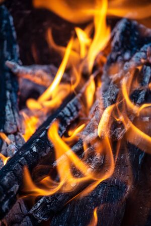 Charred wood and fire close-up Stock fotó