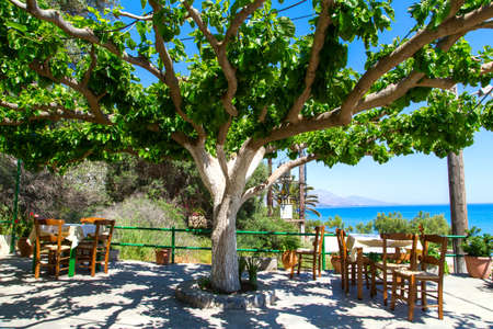 chora: tables in the tavern, in the shade under a tree, in the background the  is a sea