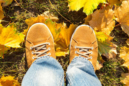 steel toe boots: on fallen autumn leaves yellow suede boots, top view