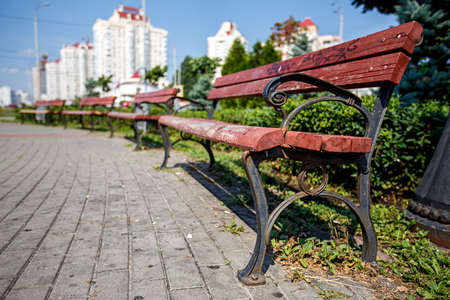 treed: benches stand in a row along the the walkway of the city  alley, summer day Stock Photo
