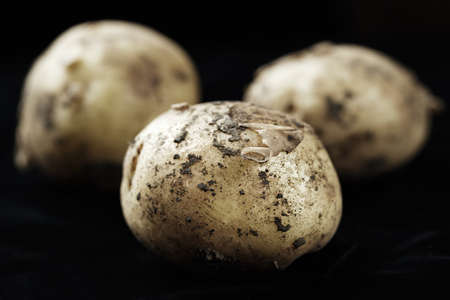 unwashed: Young unwashed potatoes scattered on a black background, space for text Stock Photo
