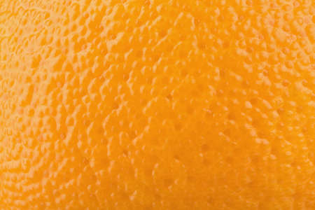 orange fruit peel close up. clearly visible texture of the skin. space for text