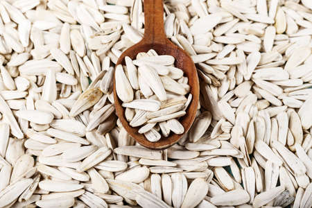 A lot of white sunflower seeds are scattered as a background. seeds in a spoon. space for text