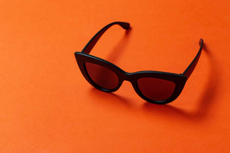 Womens retro sunglasses cat or fox on a bright orange background. space for text