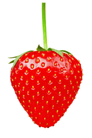 ripe strawberry with a fresh green cutting isolated on white background. file contains clipping path