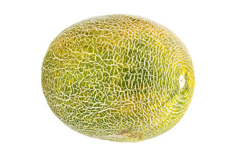 Whole melon isolated on white background. file contains clipping path Reklamní fotografie