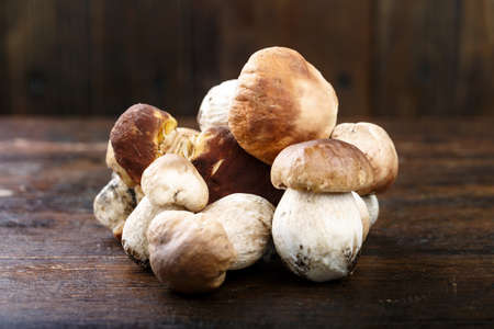 uncooked boletus mushrooms on a brown wooden background. space for text Imagens