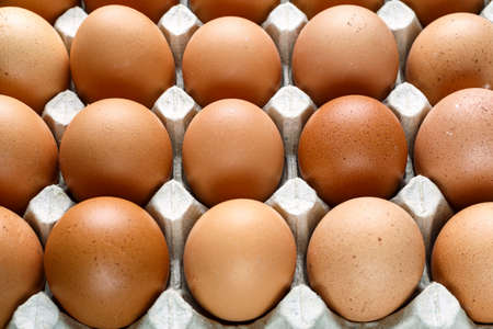 brown chicken eggs in a tray. close up as a background. place for text Stok Fotoğraf
