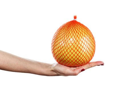 whole citrus pomelo in a grid in a female hand on a white background isolated. place for text