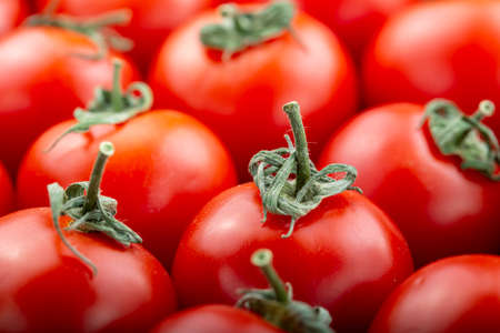 ripe tomatoes as abstract background. close-up. farmer organic crop. place for text Stok Fotoğraf