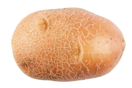 young potato isolated on a white background. the texture of the peel is clearly visible.