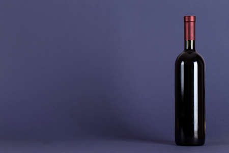 Closed bottle of red wine on a lilac background. With space for text. Wine tasting and drinking culture concept.