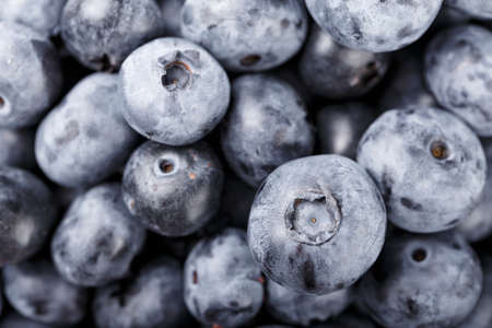 Fresh blueberry background. Blueberry texture close up. Healthy and dietary food concept. Top view.