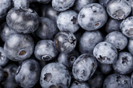 Fresh Blueberry Background. Texture blueberry berries close up. Various fresh summer berries Concept of healthy and dieting eating. Tasty food.