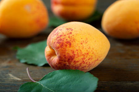 Ripe apricot with leaves on a wooden table. Home harvest from your own garden. Healthy eating. Reklamní fotografie