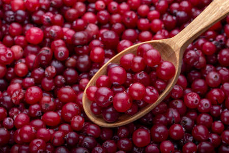 Fresh cranberries. Red background. Autumn concept. Spoon with red berries.