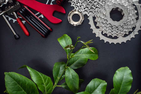 Tools and spare parts for bicycle maintenance with a green sprig of lemon. Composition with dark background. Ecology-friendly cycling Imagens