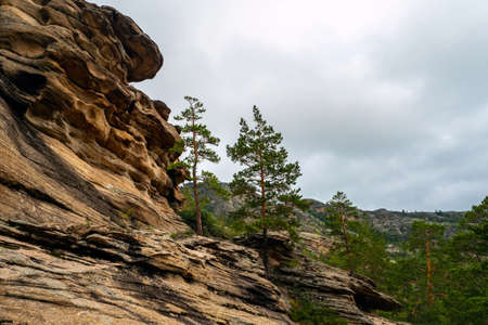 Rocky cliff of unusual rocks with pine trees. Hardened lava of ancient volcanoes. Mountains of Kent. Kazakhstan Imagens