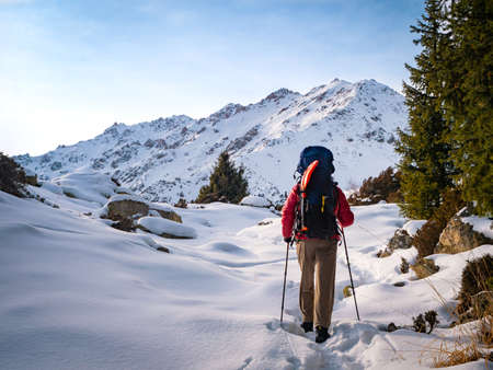Mountain winter tourism. A man with a backpack walks in the winter mountains. Back view