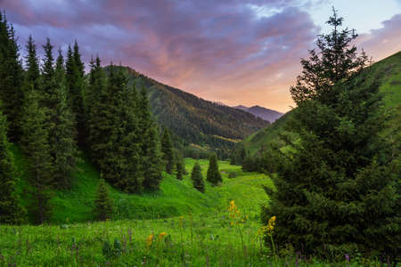 Mountain landscape. Colorful evening in the mountains in summer. Tien Shan mountains. Kazakhstan
