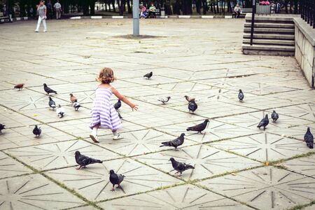 A little girl in a dress runs after the birds. Stockfoto