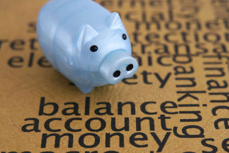 balanced budget: Balance account money concept