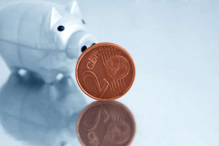Euro and piggy bank   photo