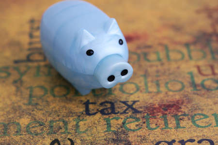 Tax and piggy bank concept Stock Photo - 11710718