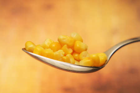 genetically modified organisms: Yellow corn