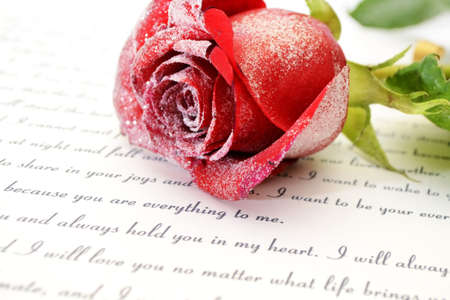 single word: Red rose on love letter Stock Photo