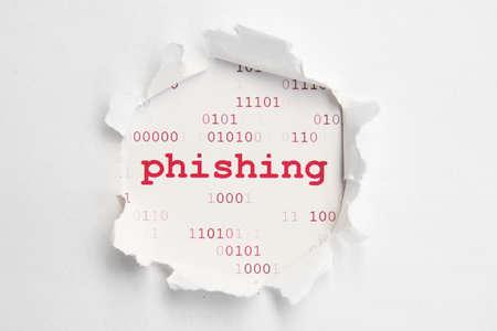 internet fraud: Phishing