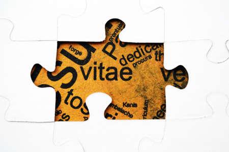cv: CV di puzzle concetto Archivio Fotografico
