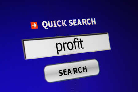 Web profit concept photo