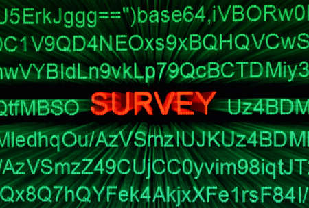 web survey: Web encuesta Foto de archivo