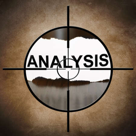 Analysis target photo