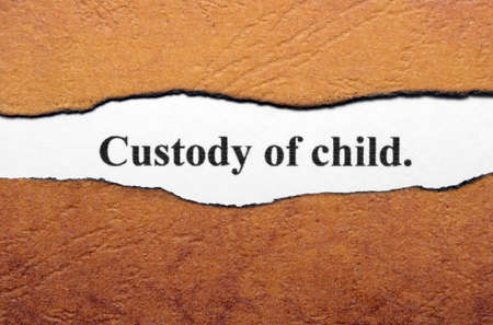 son in law: Custody of child