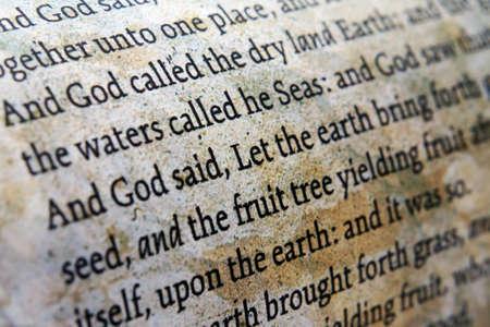 Bibel hautnah