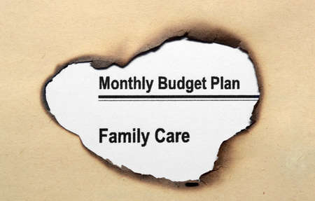 monthly salary: Monthly budget plan