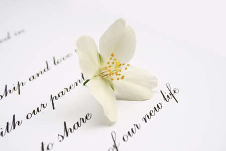 cherish: Love letter