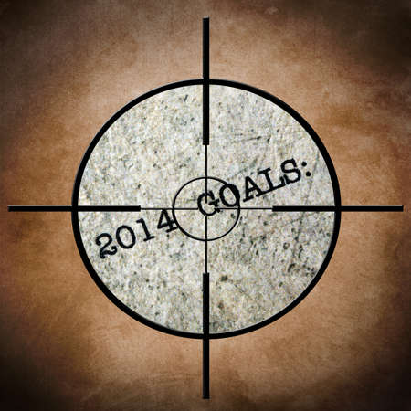 accomplish: 2014 goals target