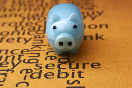 Piggy bank on secure text concept photo