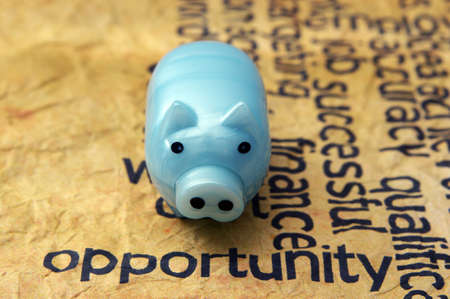 Piggy bank and opportunity text photo