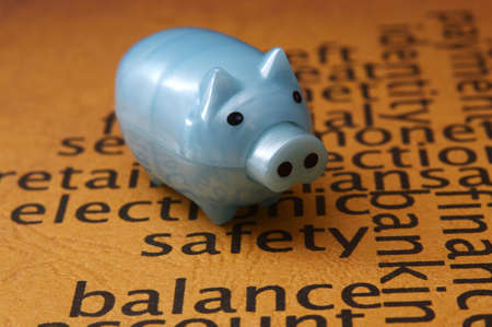 Piggy bank and safety concept photo